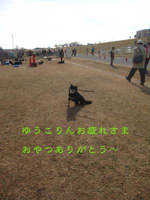 Img_3578_2